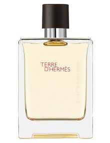 Terre D'Hermes for Men, edT 100ml by Hermes